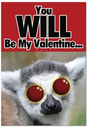 You Will Be My Valentine Card
