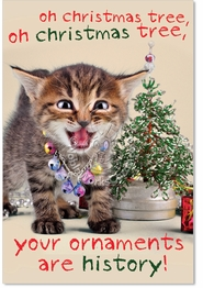 your ornaments are histor Card