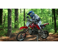 Apollo / Orion XT Deluxe 110cc Dirt / Pit Bike from Motobuys.com