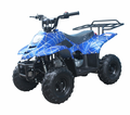 Coolster - Tao 110cc ATV from Motobuys.com
