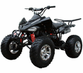 Coolster Ultra Sports Quad 150cc Fully Automatic Adult Size -Free Shipping