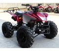 Fleetwood  Ultra 110cc ATV.