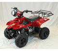 Fleetwood 110cc Youth Quad/