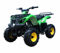Jet Moto Series Wranger X3 125cc Sport - CALIF LEGAL!