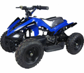 Trailmax Electric ATV