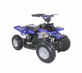 Kicker Electric Atv