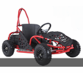 Kicker  Electric Go Kart - 800 Watts - 48 Volts - Speeds to 16mph! Calif Legal!