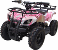 Kicker Fully Electric ATV / Quad