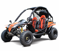 Kymoto XL200 Go Kart - Bigger More Powerful Engine -