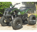 "Regency Mountain Cat 110-SU Sport/Utility ATV - 110cc Quad! -Oversize 7"" Tires! With Reverse!"
