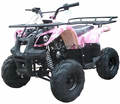 Regency Mountain Cat 125-SU Sport/Utility ATV - Quad!