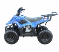 Tao Tao 110cc Deluxe Youth Quad/