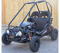 Trailmaster XRX Mini Go Kart