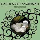 32 oz. Gardens of Savannah La Tee Da Fragrance Oil | 32 oz.  La Tee Da Fragrance Lamp Oils