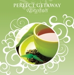 NEW! - 16oz. Perfect Getaway La Tee Da Fragrance Oil | 16 oz. La Tee Da Fragrance Lamp Oils