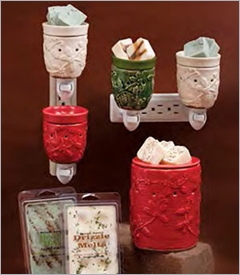 COMING SOON! - Wax Melters by Swan Creek Candles