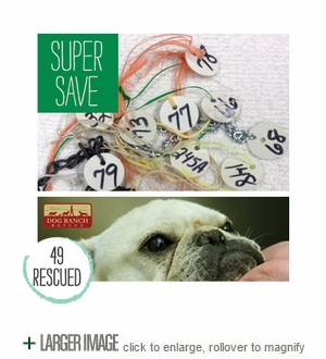 The Super Save from a Dog Auction