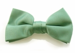 Boy's Aquamarine Band Bowties