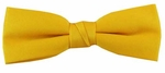 Boy's  Bright Yellow Band Bowtie