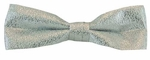 Boy's Metallic Silver Band Bowtie
