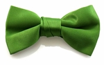 Boy's Spring Green Band Bowties