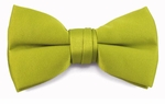 Boys Avocado Band Bow Tie