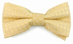 Boys Pale Yellow & Cream Band Bow Tie