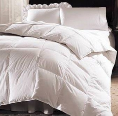White Down-Alternative Comforter - Duvet Cover Insert - Available in Twin, Queen & King Sizes