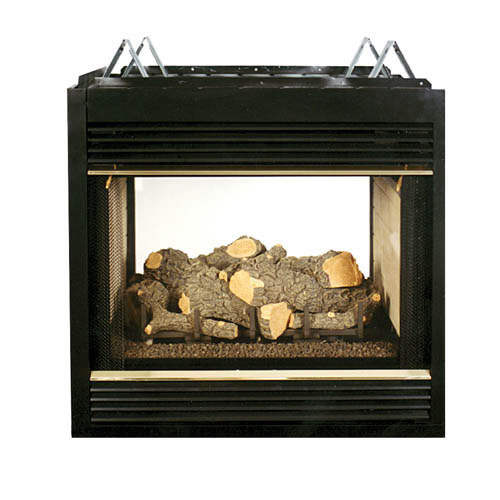 Stupendous Propane Fireplace Two Sided Ventless Propane Fireplace Home Interior And Landscaping Ologienasavecom