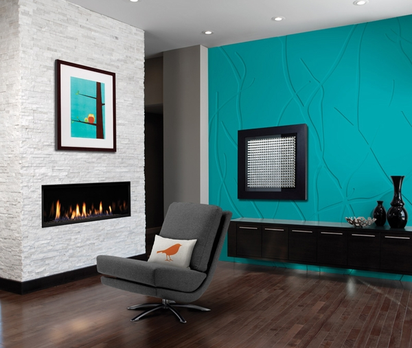 fireside insert full-featured with on-screen