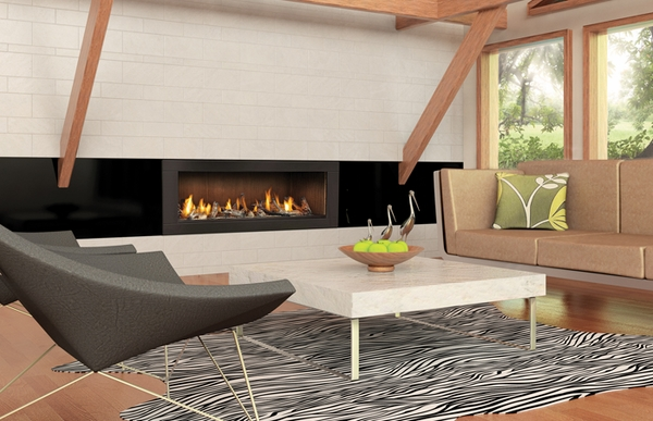 """Napoleon 62"""" Linear Direct Vent Propane Gas Fireplace ..."""