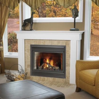 napoleon bgd36ntr direct vent gas fireplace with
