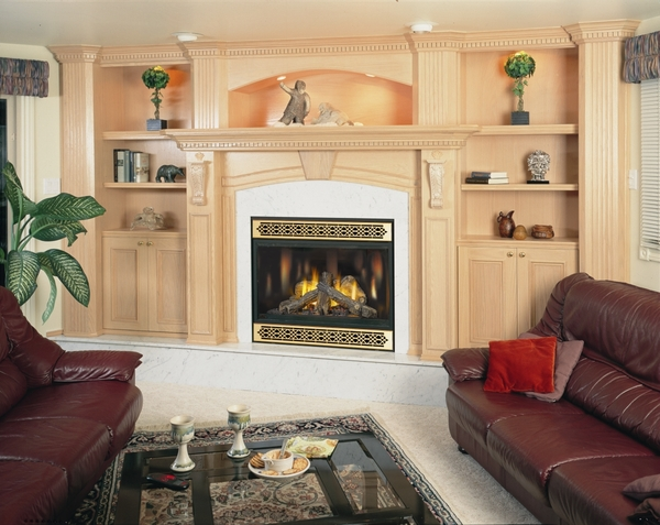 napoleon bgd42n direct vent gas fireplace 42 in