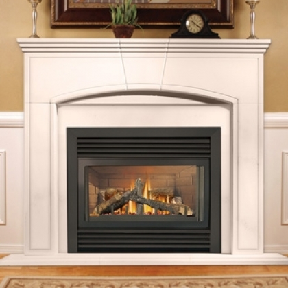 napoleon fireplaces wood burning gas fireplaces by