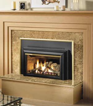 napoleon gdizc direct vent gas fireplace insert gdizc nsb