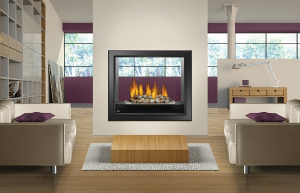 fireplaces napoleon hd81 high definition see thru direct vent gas