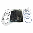 Steering Gear Seal Kit, Power Steering