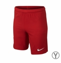Nike USA 2014/2015 Youth Away Stadium Shorts