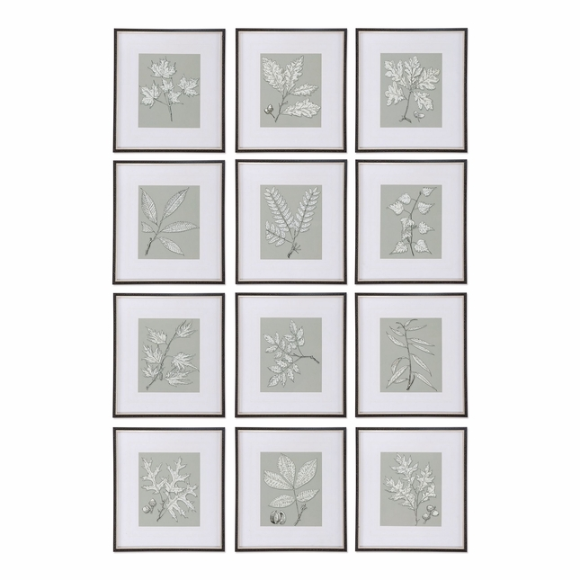 """Set Of 12, Leaves On Taupe Wall Art With Black Shadowbox Style Frame , 18""""x20"""""""