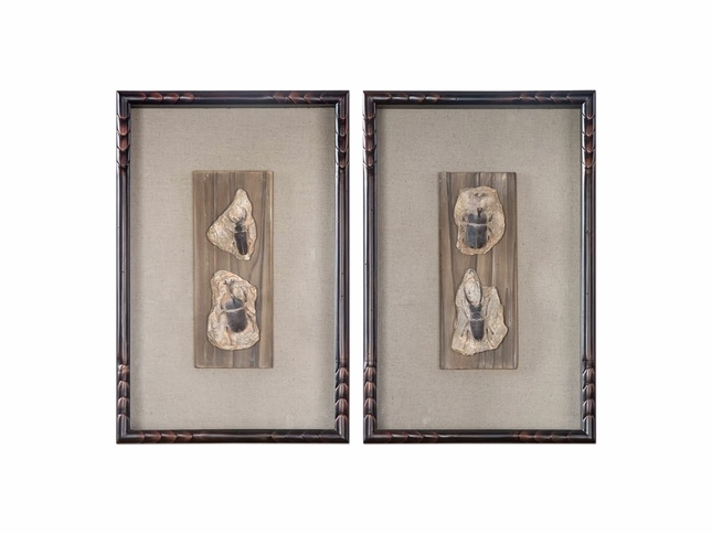 "Set Of 2, Fossilized Insects Art In Shadowbox Frame With Walnut Window, 12""x18"""