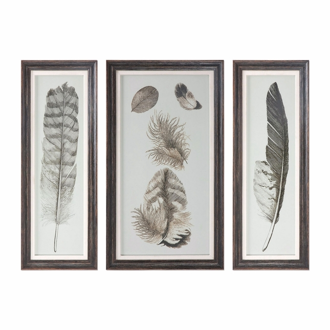 """Set Of 3, Feather Study Prints In Rectangular Distressed Wooden Frame 32""""x12"""""""