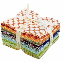 Amy Butler Fat Quarters Timeless Fabrics Forever 18X21