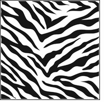 Crafter's Workshop Templates Zebra Print