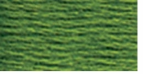 DMC Six Strand Embroidery Floss Cone Parrot Green Dark #905