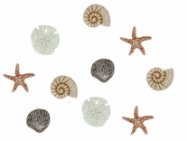 Dress It Up Embellishments Seashells