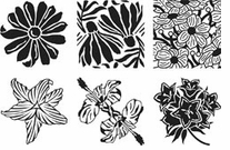 Garden Flower Rubbing Plates Set Of Six