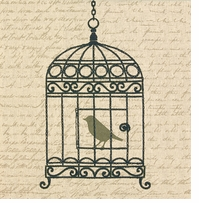 Handmade Collection Vintage Birdcage Stamped Embroidery Kit