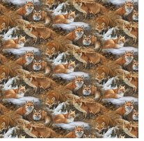 Wild Wings Foxcroft Foxes