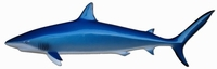 "53"" Blue Shark Half Mount Fish Replica"