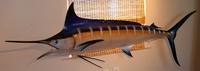 "96"" Blue Marlin Torpedo Half Mount Fish Replica"